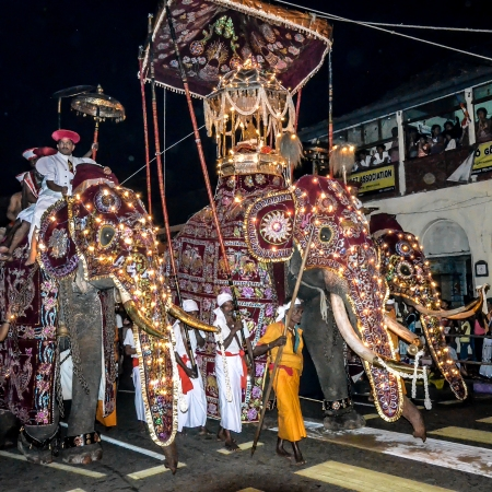 "Esala Perahera - ""festival of the tooth"""
